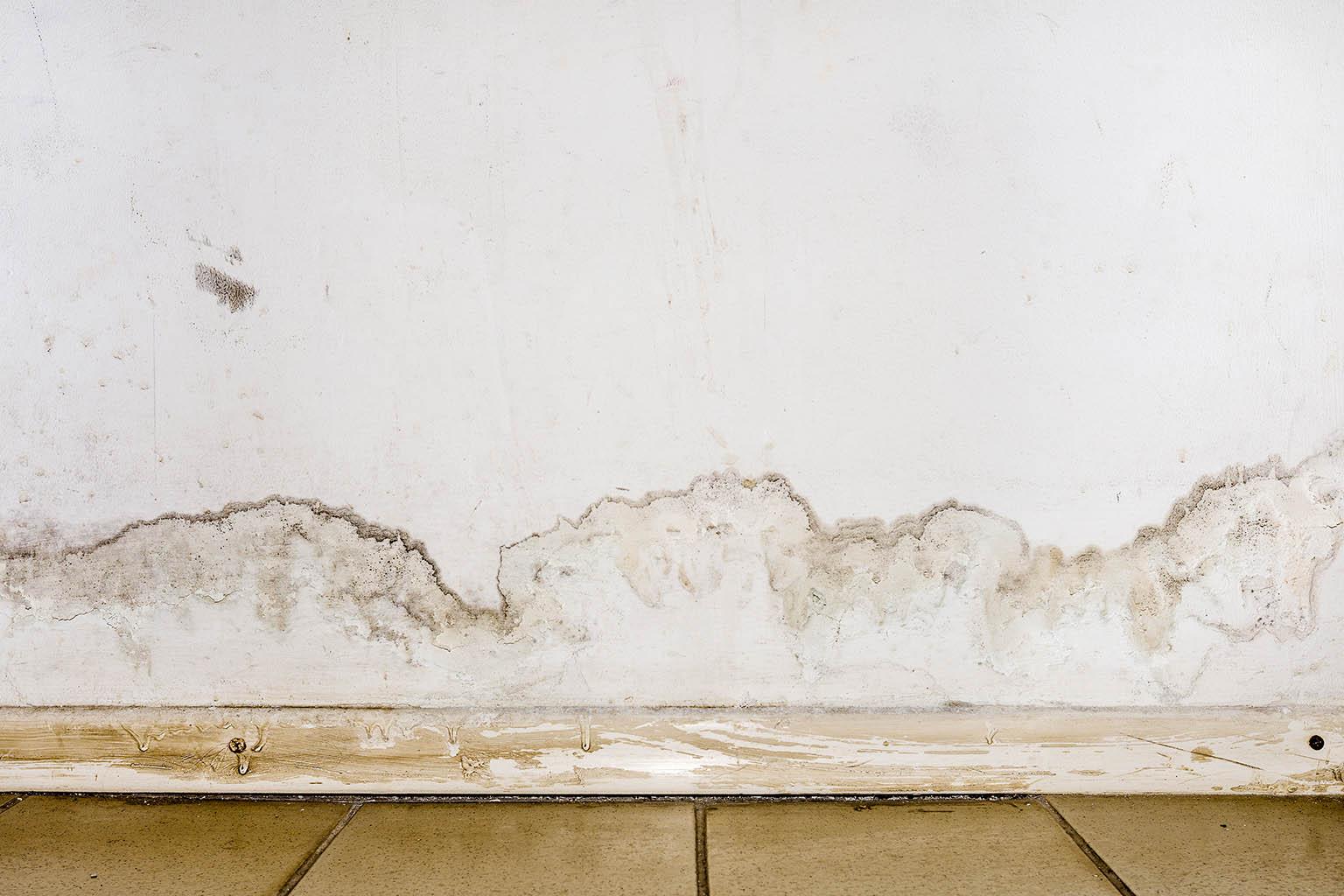 Devis Traitement Humidité  Chilly-Mazarin ▷ Coût : Entreprise, diagnostic remontées capillaires murs