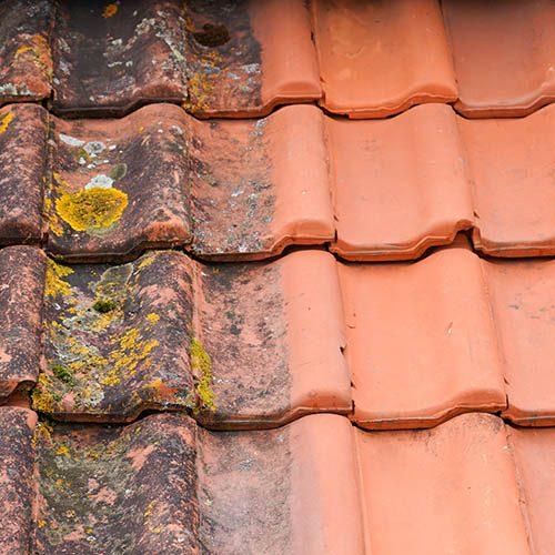 France pro habitat nettoyage toitures 1