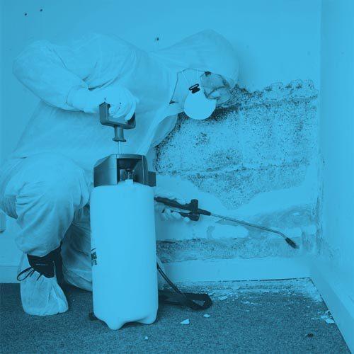 traitement-humidite-murs-2.jpg